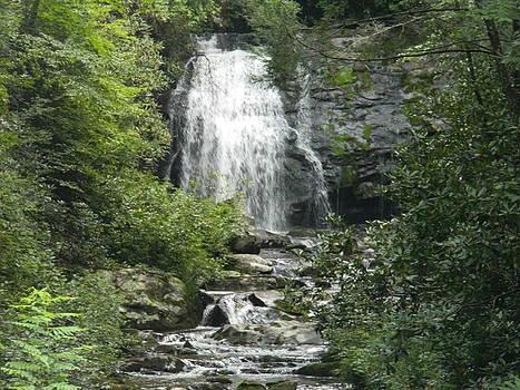 Waterfall by Linda Brown