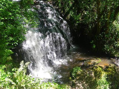 Waterfall by Warren Schoel