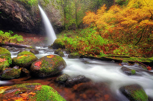 Waterfall with autumn colors by William Lee