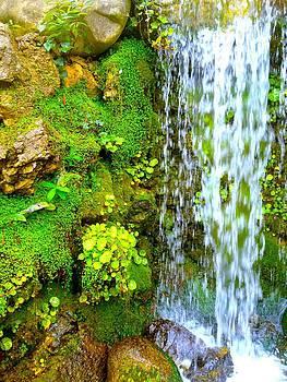 Waterfall1 by Gala Ilchenco