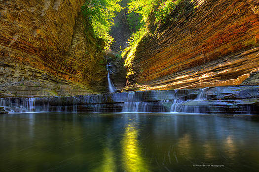 Waterfalls at Watkins Glen State Park by Wayne Moran