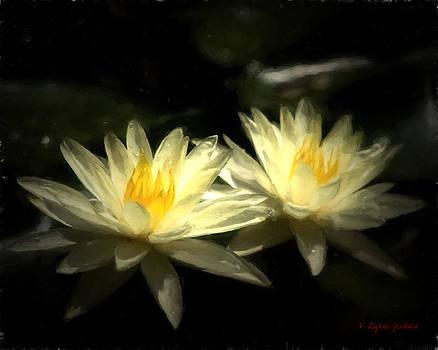 Waterlilies by Lynne Jenkins