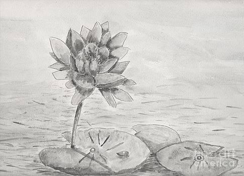 Waterlily Monotone by Pamela  Meredith