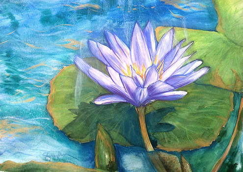 Waterlily 2 by Shelley Overton