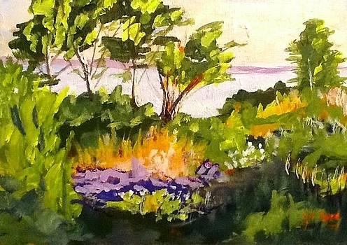 Waterway Backyard by Joe Byrd