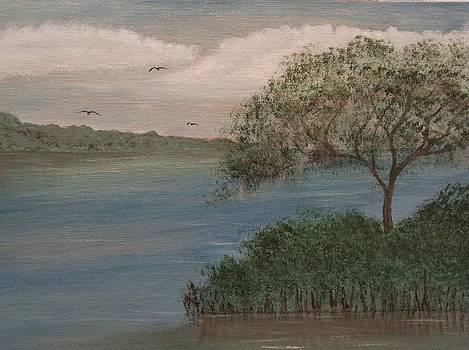 Waterway by Michelle Treanor