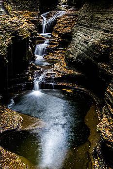 Watkins Glen Waterfalls by Kaye Seaboch