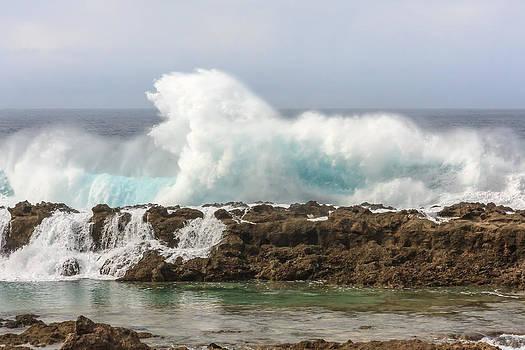 Wave Power by Susan Leonard