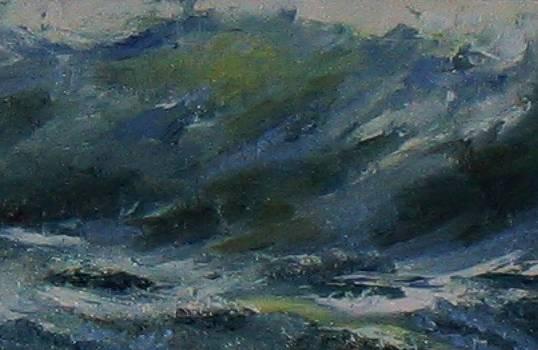 Wave Study by Patricia Seitz
