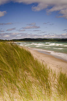 Waves of Water and Grass by Thomas Pettengill