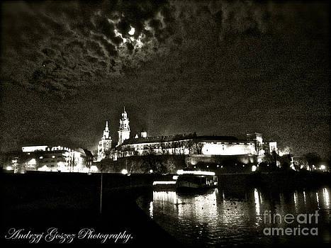 Wawel Royal Castle from Vistula River embankment. by  Andrzej Goszcz