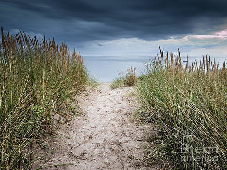 Way to the Beach by David Hanlon