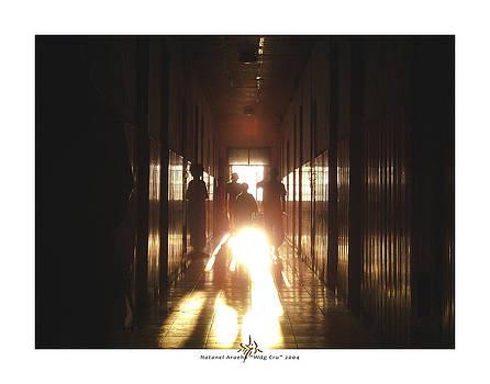 Wdg Cru by Natanel Araeha