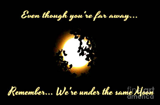 We are under the same Moon by Gail Matthews