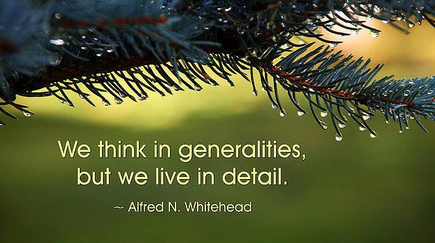 We Think in Generalities by Mike Flynn