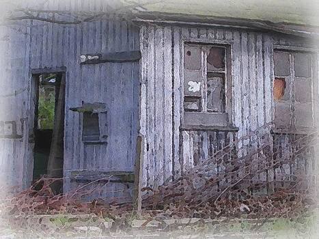 Weathered Shed by Philip White