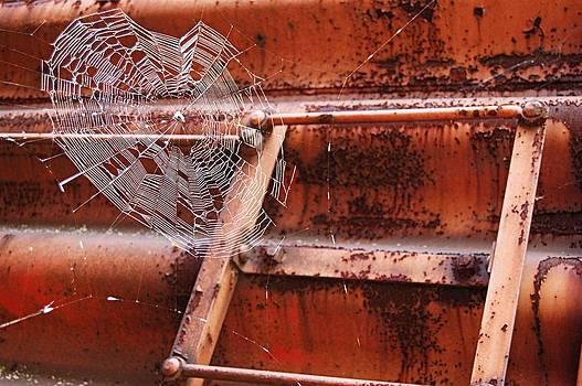 Web by Heart On Sleeve ART