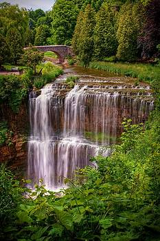 Webster's Falls by Dave Files