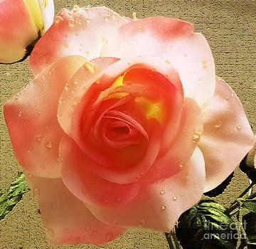 Wedding Roses by Eddie Eastwood