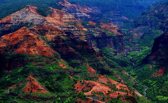 Weimea Canyon Closeup by Dennis Begnoche