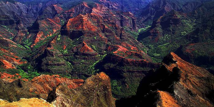 Weimea Canyon Vista Point by Dennis Begnoche