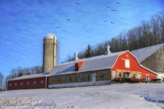 Well Kept Farm by David Simons