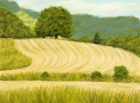 Welsh countryside by Rebecca Prough