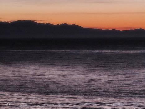 Sandy Rubini - West Beach at Sunset