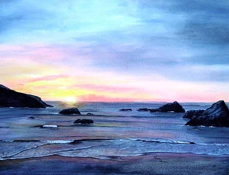West Coast Sunset by Penny Johnson