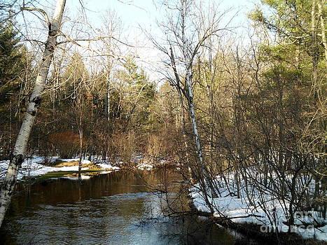 West Michigan Spring by Erica  Darknell