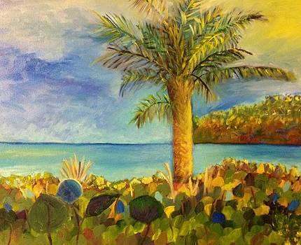 West Palm Beach by Marita McVeigh
