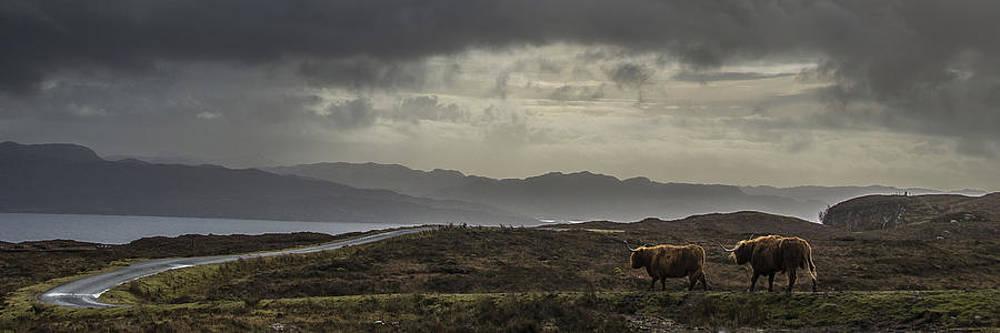 Westering Home by Joak Kerr