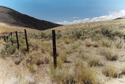 Western Landscape by Lynn Wohlers