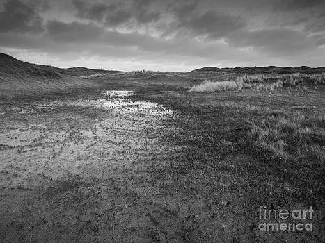 Wet Dune Valley  by David Hanlon