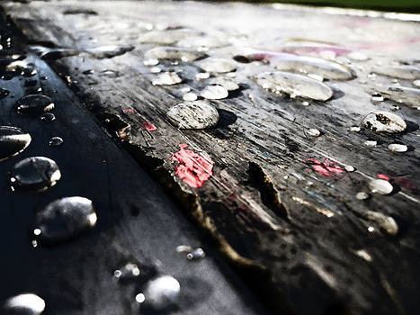 Wet Ground by Florin Birjoveanu