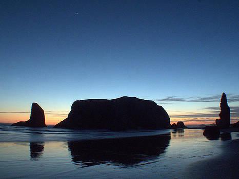 Whale Rock by Suzy Piatt