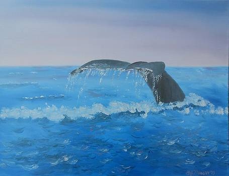 Whale Watching - Cabo by Dorothy Merritt
