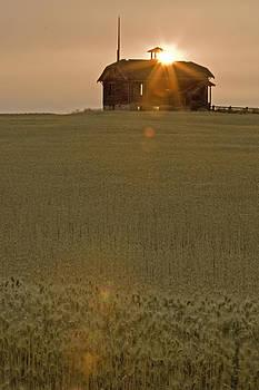 Wheatfield Sunset by Judi Baker