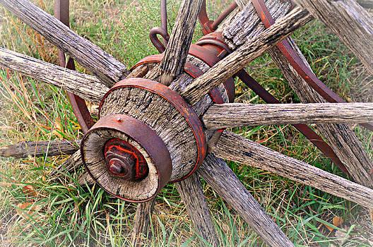 Marty Koch - Wheel of Old