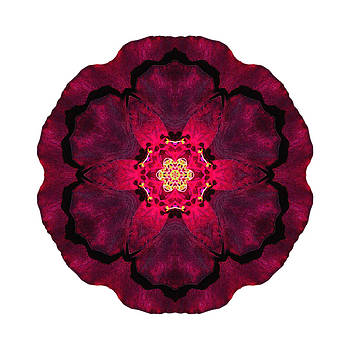 Beach Rose II Flower Mandala White by David J Bookbinder