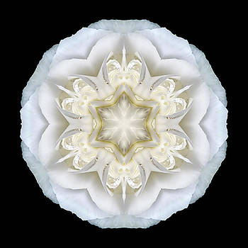 White Begonia II Flower Mandala by David J Bookbinder