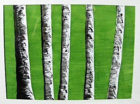 White Birch On Green by Chip Picott