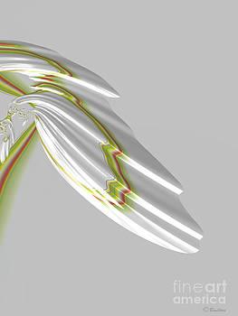 White Bird by Barbara Milton