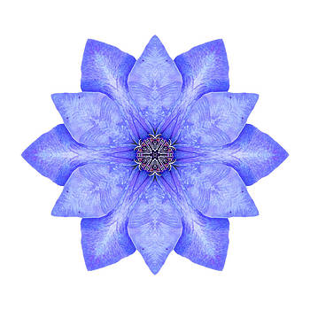 Blue Clematis I Flower Mandala White by David J Bookbinder