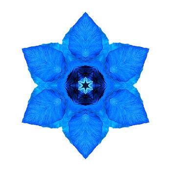 Blue Pansy II Flower Mandala White by David J Bookbinder