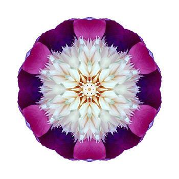 Bowl of Beauty Peony II Flower Mandala White by David J Bookbinder