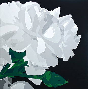 White Carnations by Susan Porter