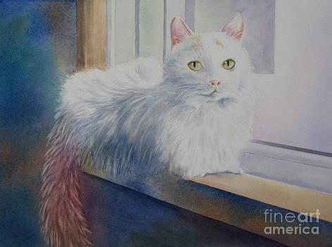 White Cat by Deborah Ronglien