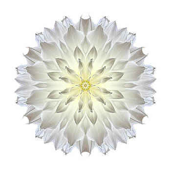 Giant White Dahlia I Flower Mandala White by David J Bookbinder