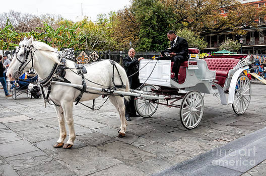 Kathleen K Parker - White Horse and Carriage - NOLA